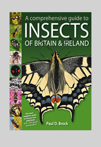 Insects of Britain and Ireland